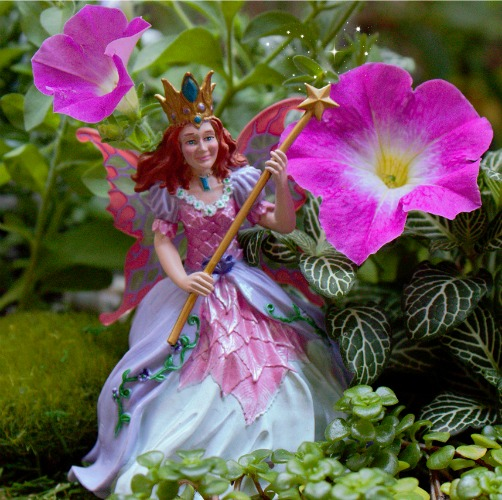 Rose Fairy Queen