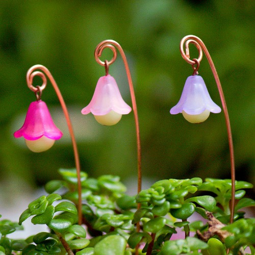 Lamps, Lanterns & Lights