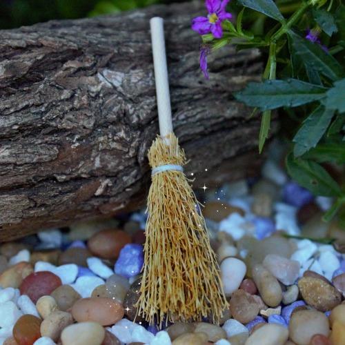 Mini Broomstick