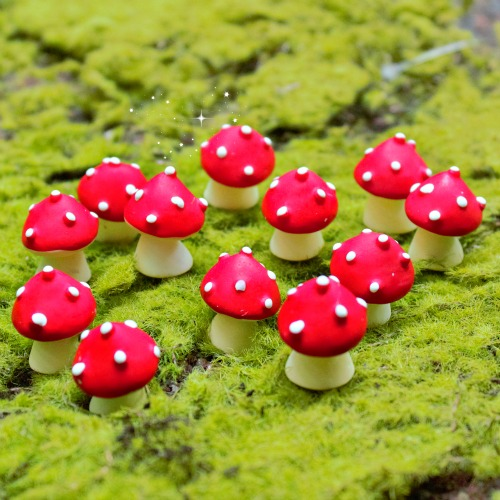 Mini Fairy Garden Mushrooms