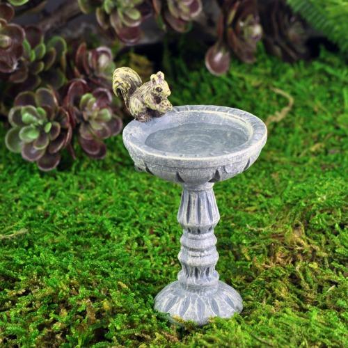 The Squirrel Bird Bath U2013 Miniature Fairy Garden Accessories