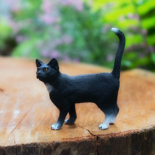 little-black-cat-garden-sparkle