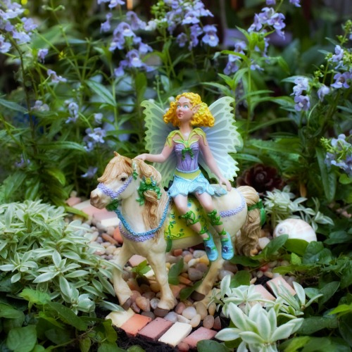 adventure-fairy-fairy-garden-play