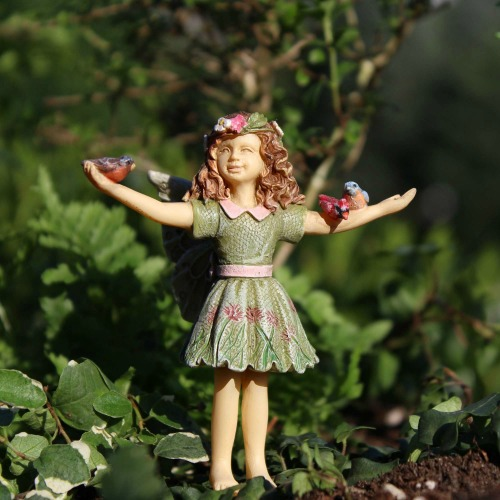 Fairy Courtney – Garden Sparkle