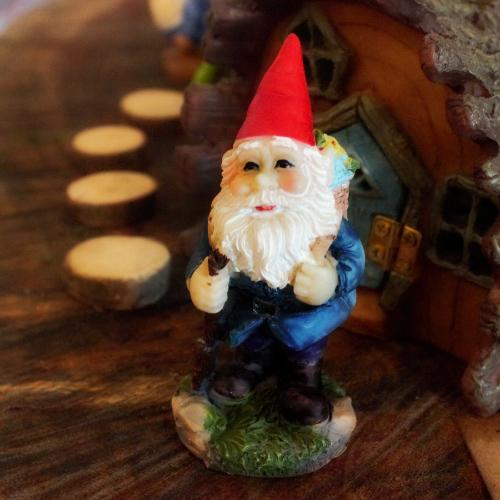 Wanderer Gnome